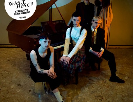 Walt Disco announce brand new single 'Strange To Know Nothing'