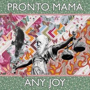 Pronto Mama 'Any Joy'